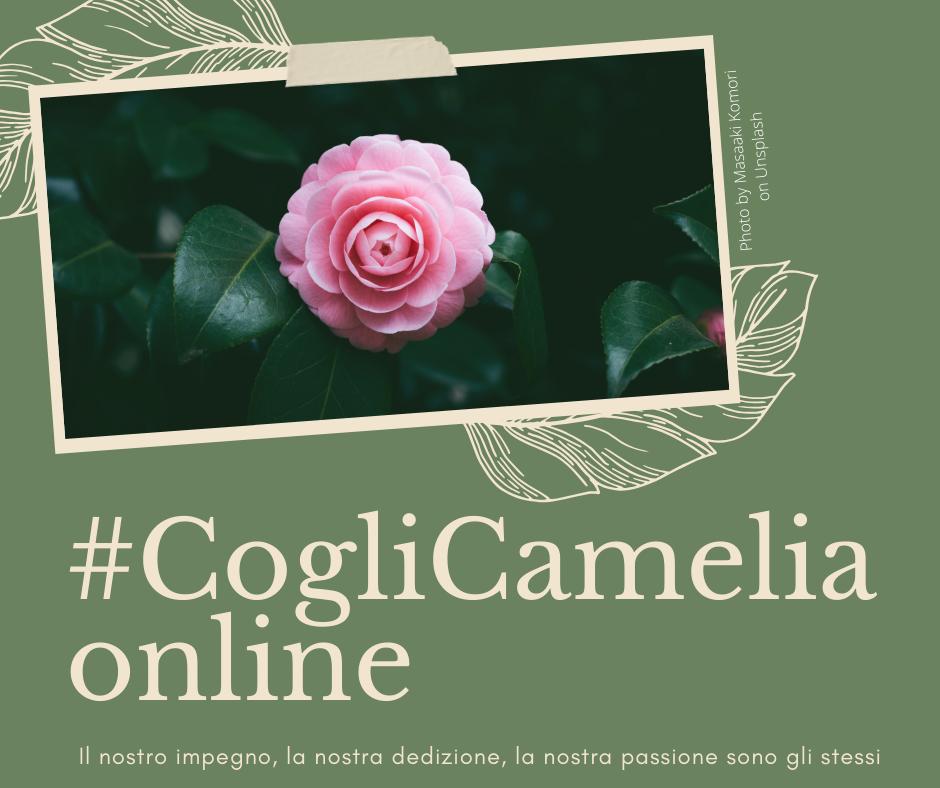 Cogli Camelia online!